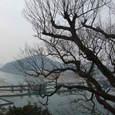 3月13日*犬山城から