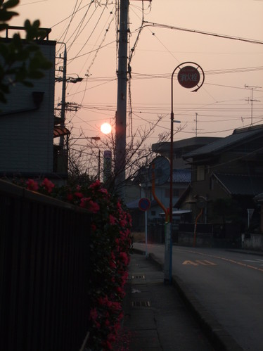 あさひ(朝日)・・・生きる